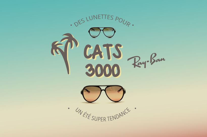 Les Ray-Ban RB 4125 Cats 5000
