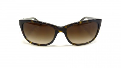 Dolce & Gabbana DG 4123 502 13 Ecaille